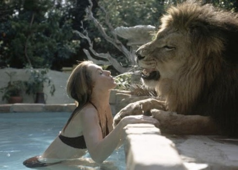 Tippi Hedren and her lion