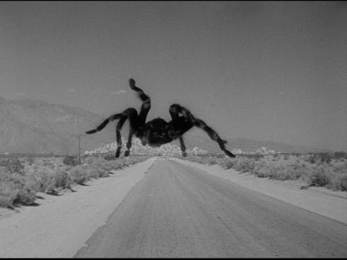 Jack Arnold's Tarantula 1955
