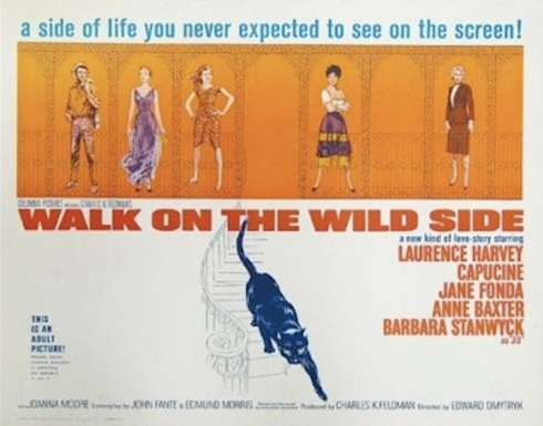 walk on the wild side poster