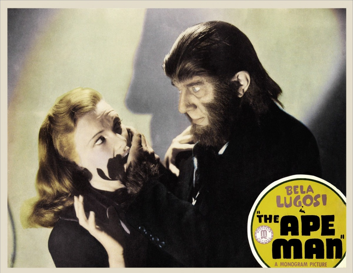 from man to ape Ape definition is - monkey especially : one of the larger tailless or short-tailed old world forms  mocking a vain man's pompous manner 3 ape adjective.