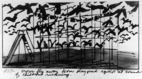 story boards The-Birds-1963