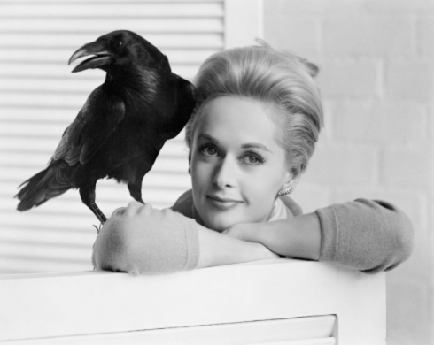tippi and crow promo shot